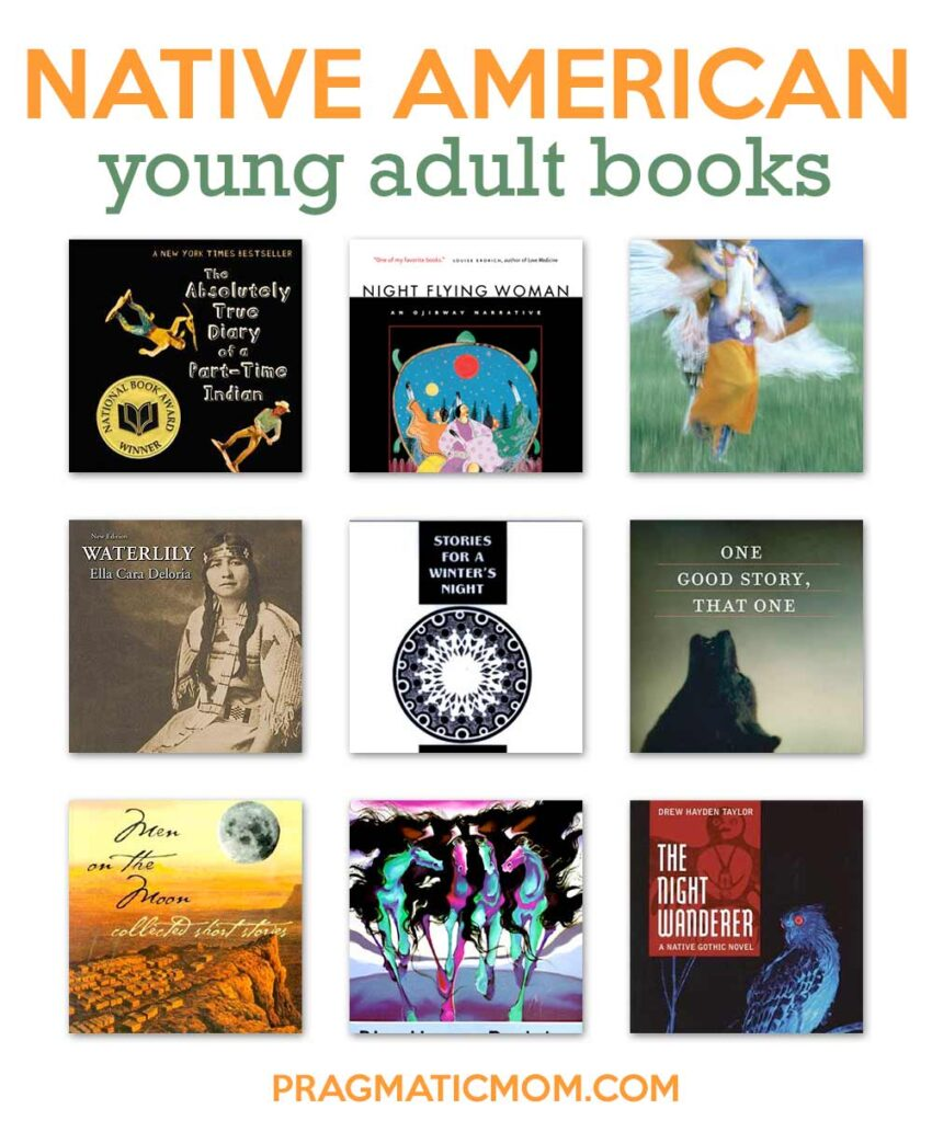 Native American Young Adult Books