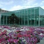 Harold B. Lee Library, Brigham Young University BYU Library PragmaticMom Pragmatic Mom