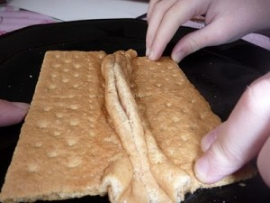 earthquake experiments for kids, plate tectonics experiment for kids, graham cracker earthquake project