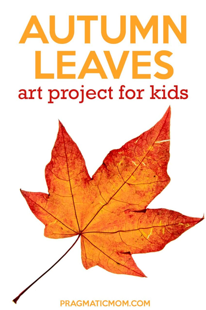 Autumn Leaves Art Project for Kids