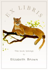 Felix Doolittle, book plates for kids, custom book plates, book labels for kids
