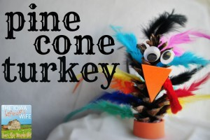 pinecone turkey, iowa farm wife