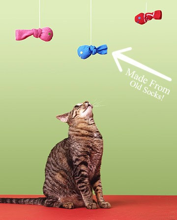Diy gifts for cats day 10 12 days of shopping for Easy crafts to make for friends