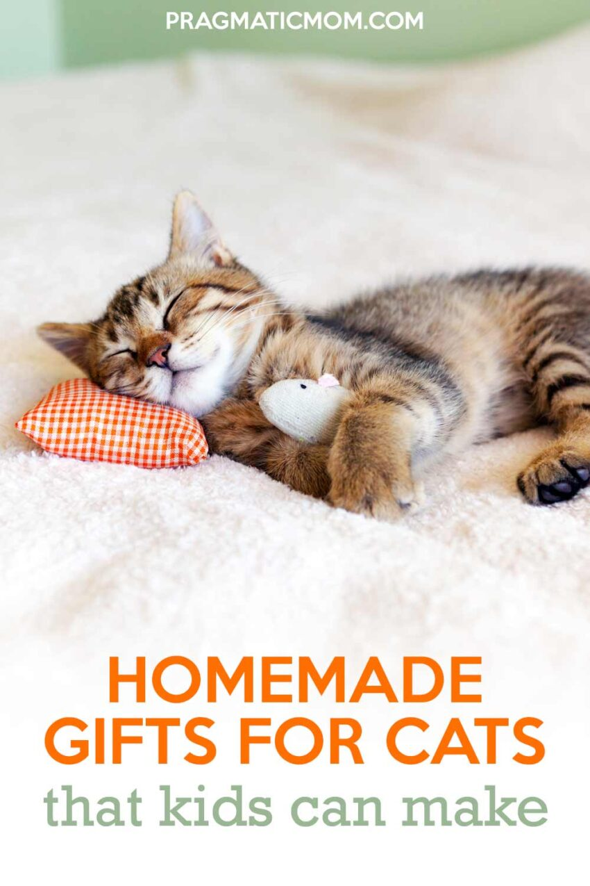Homemade Gifts for Cats That Kids Can Make!