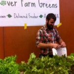 hydroponic lettuce, newton indoor farmers market