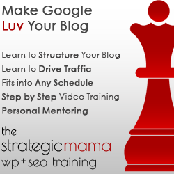 SEO Class for Mom Bloggers