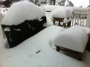 Nemo, blizzard,