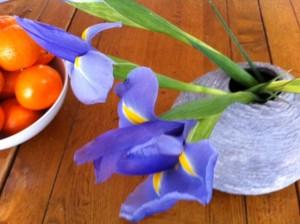 iris flowers to paint, book club painting iris flowers