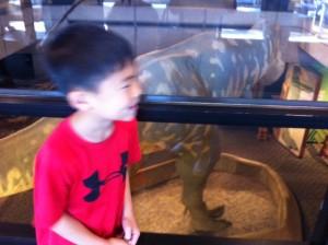 T. Rex, Tyranosaurus Rex, Museum of Science Boston, Gigantosaurus versus Tyranosaurus Rex, Gigantosaurus vs T Rex