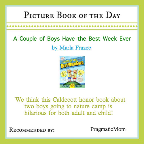 summer camp picture book, summer camp chapter book, picture book of the day