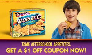 Nacho Bites