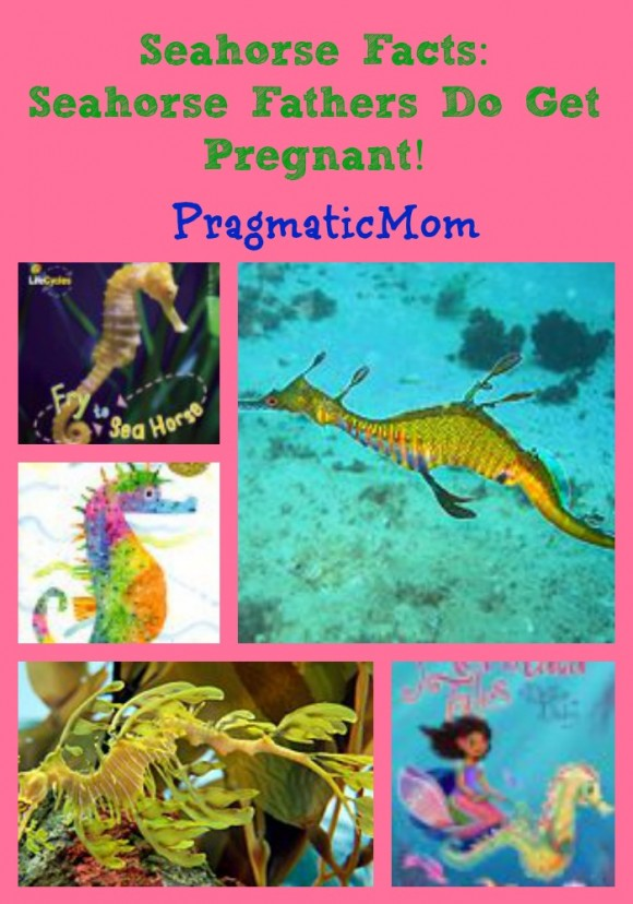 seahorse facts for kids, seahorse books for kids