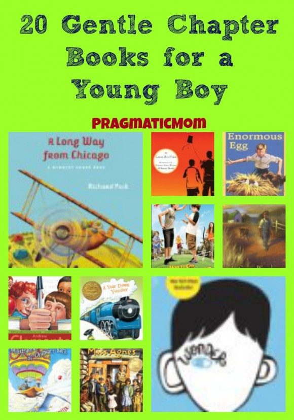 20 Gentle Chapter Books for a Young Boy