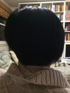Future Hair Stylist PickyKidPix Cuts My Hair