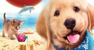 Petz Beach DS game