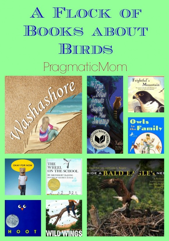 A Flock of Books about Birds from Suzanne Goldsmith Washashore