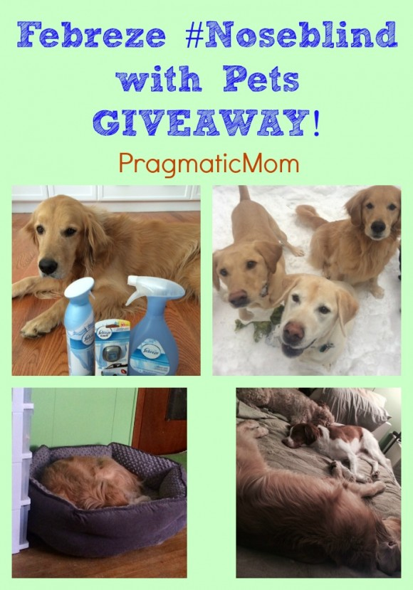 Febreze #Noseblind with Pets GIVEAWAY and CONTEST!