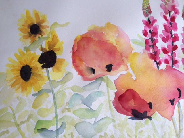 watercolor poppies sunflowers and lupins