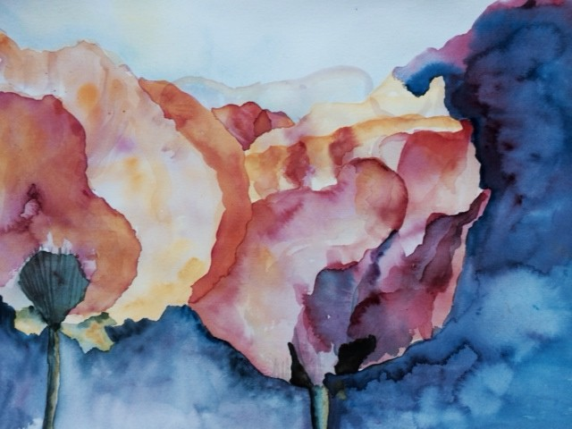 watercolor poppies, being creative 15 minutes a day