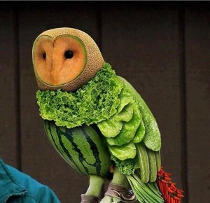 owl made from food
