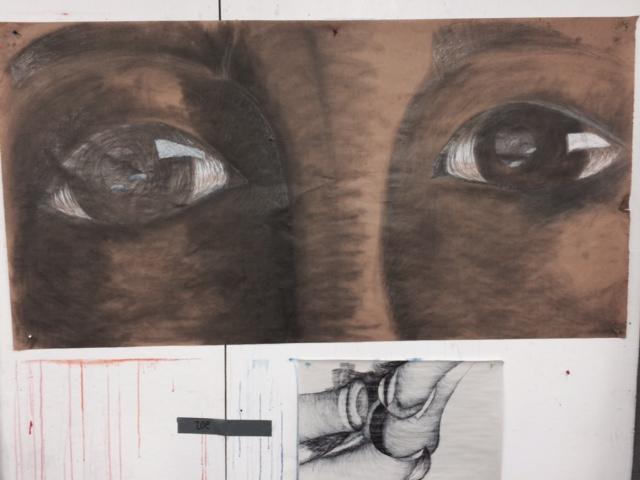 Grasshopper and Sensei eye drawings