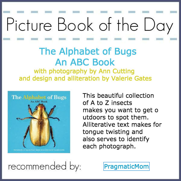 The Alphabet of Bugs ABC Book Picture Book of the Day