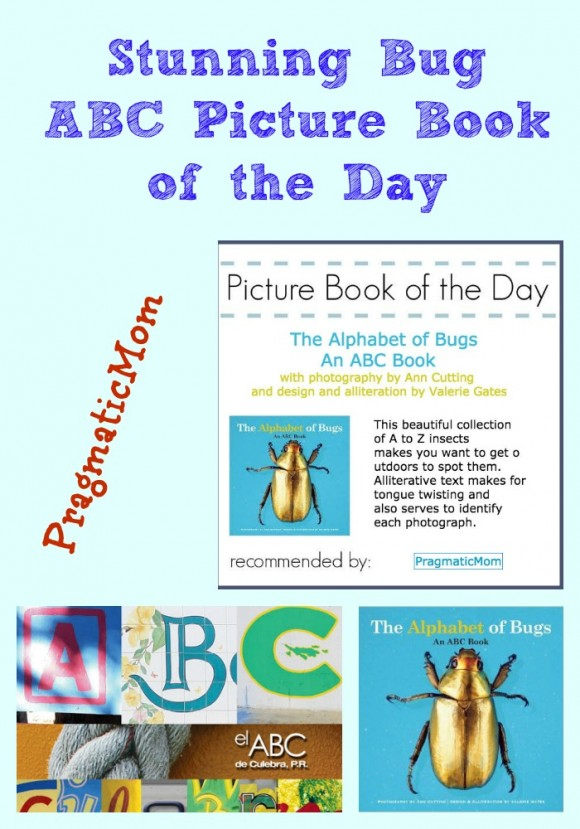 Stunning Bug ABC Picture Book