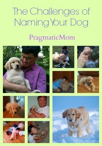 The Challenges of Naming Your Dog