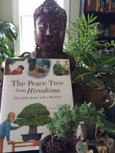 The Peace Tree from Hiroshima, bonsai