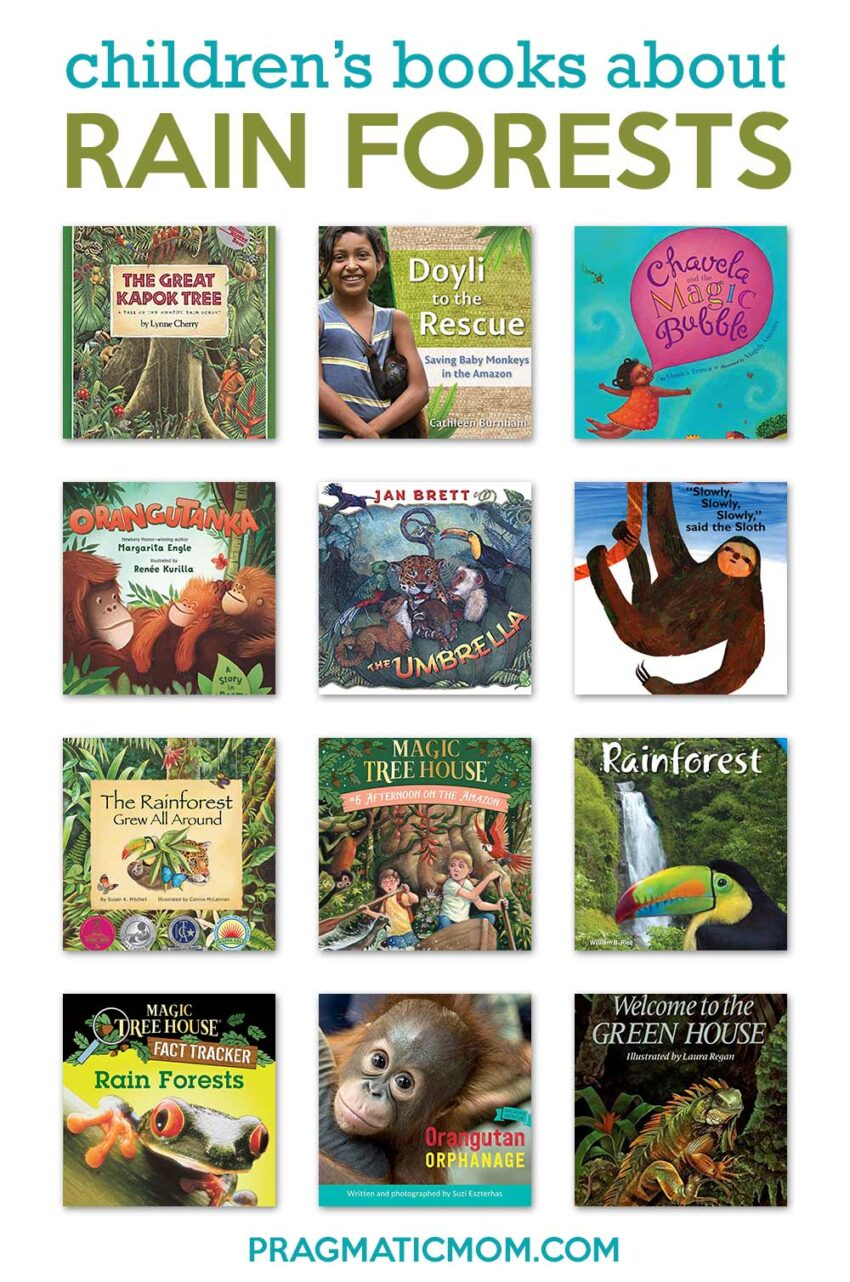 Top 10 Rain Forest Books for Kids