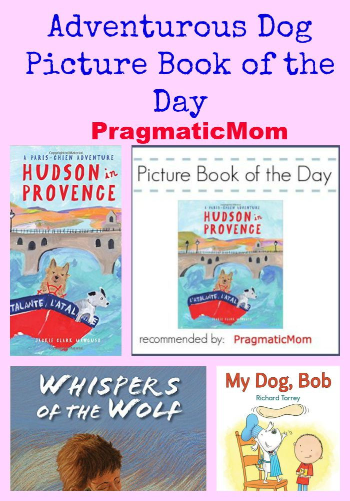 Adventurous Dog Picture Book of the Day