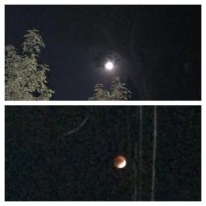 Bloodmoon super moon lunar eclipse Boston