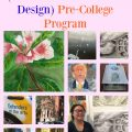 RISD Precollege Program Summer 2016