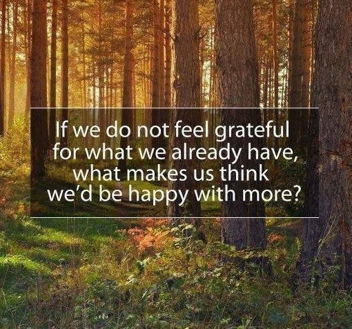 giving back, happiness and gratitude quote