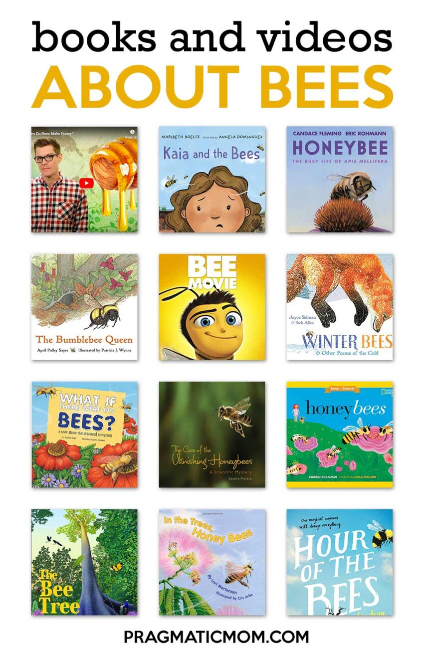 Books and Videos About Bees