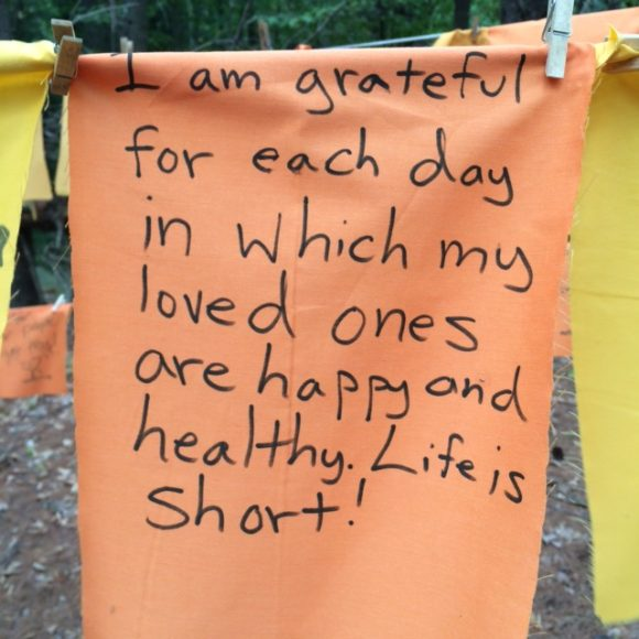 Gratitude Flags Public Art at My Dog Park