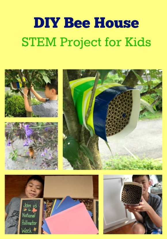 DIY Bee House STEM Project for Kids