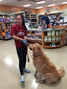 therapy dog test Pets and People