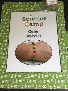 gene bracelet science camp