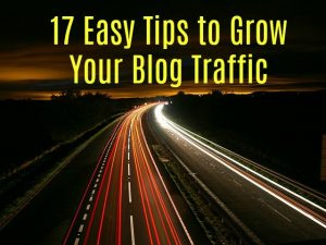 17 Easy Tips to Grow Your Blog Traffic