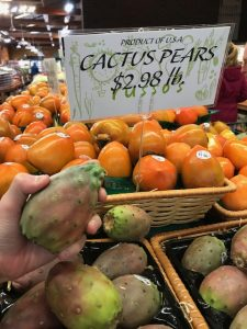My Son's Exotic Fruit Challenge: Prickly Pear Fruit