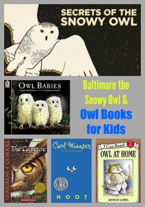 Baltimore the Snowy Owl & Owl Books for Kids
