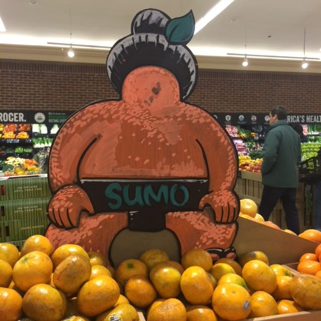 15 year old Exotic Fruit Challenge: Sumo Orange