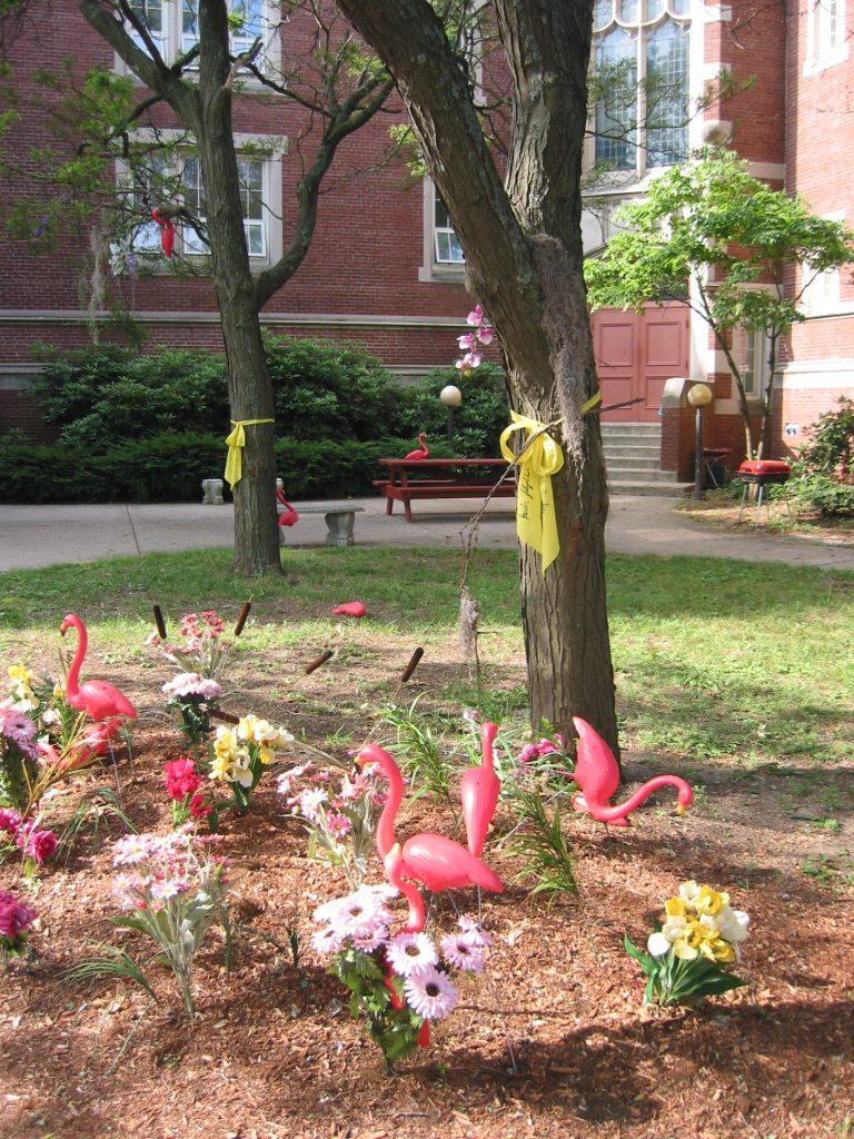 pink flamingos Newton MA