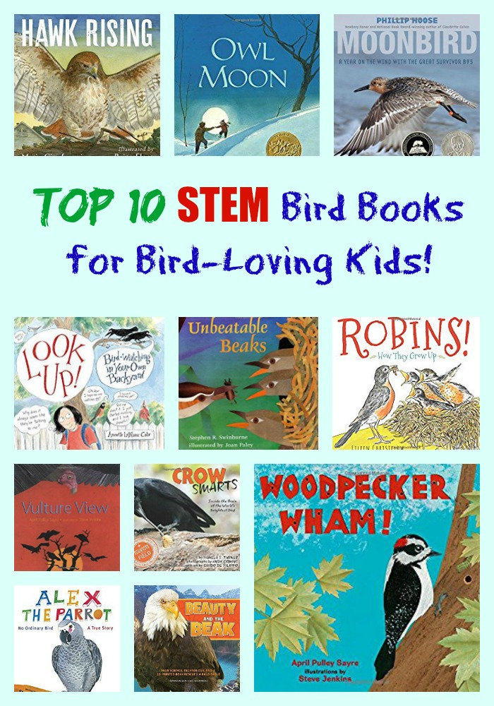 Top 10 STEM Bird Books for Bird-Loving Kids!