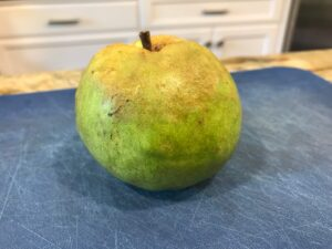 My 14-year-old's Exotic Fruit Challenge: Guava