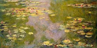 Monet Waterlily