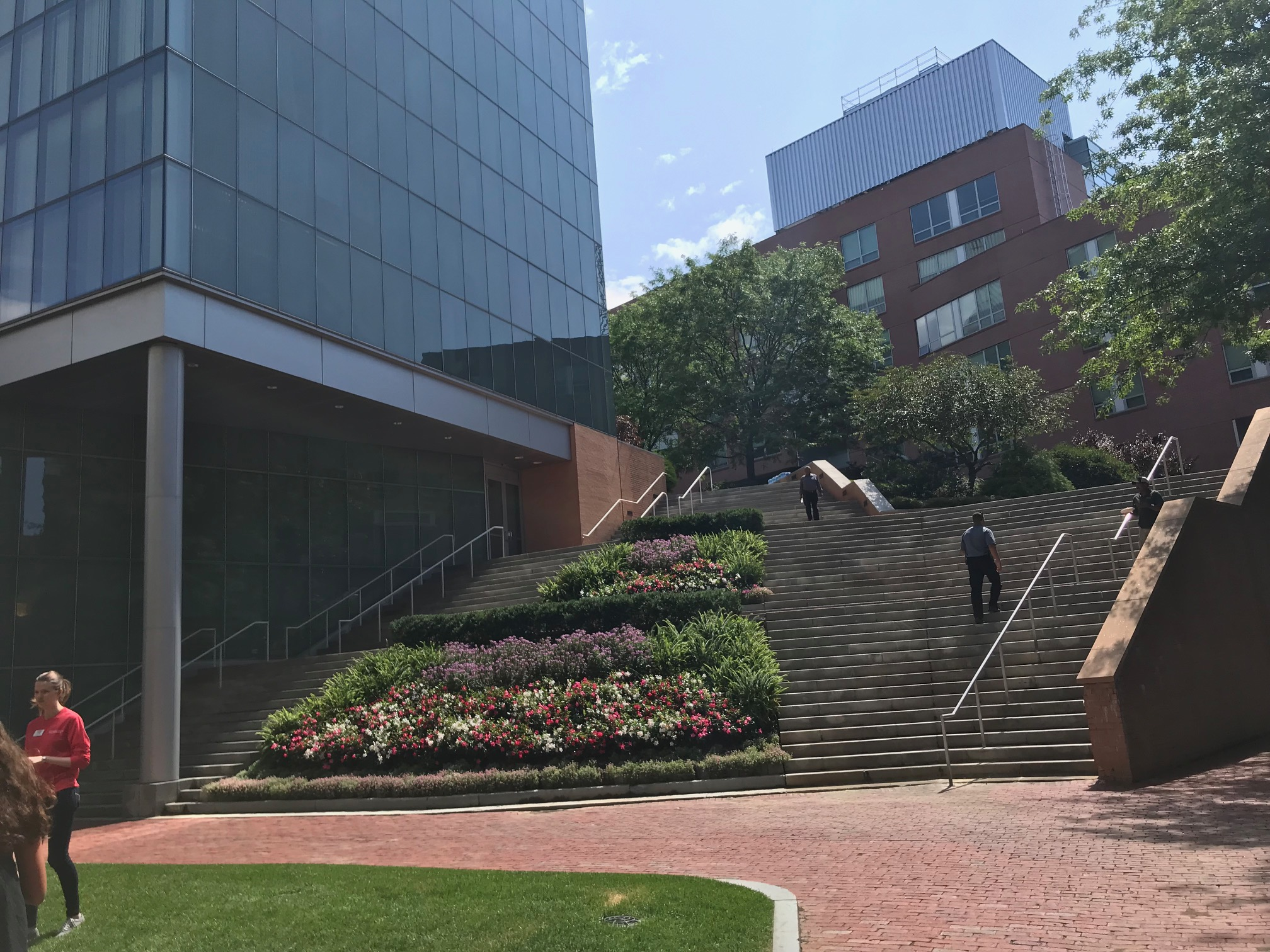 Northeastern University College Green Spaces